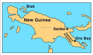 New Guinea & Biak